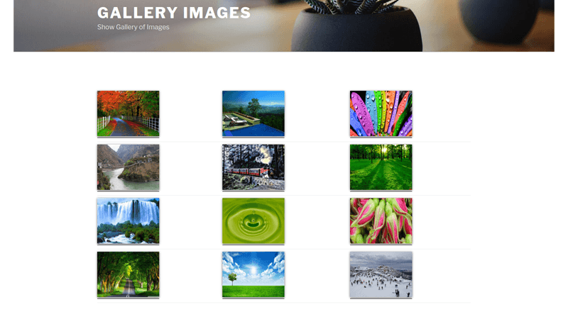 wpgallery4